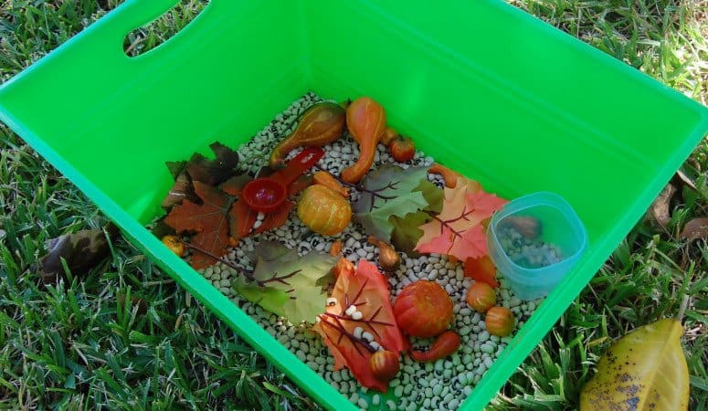 Fall Themed Sensory Bin