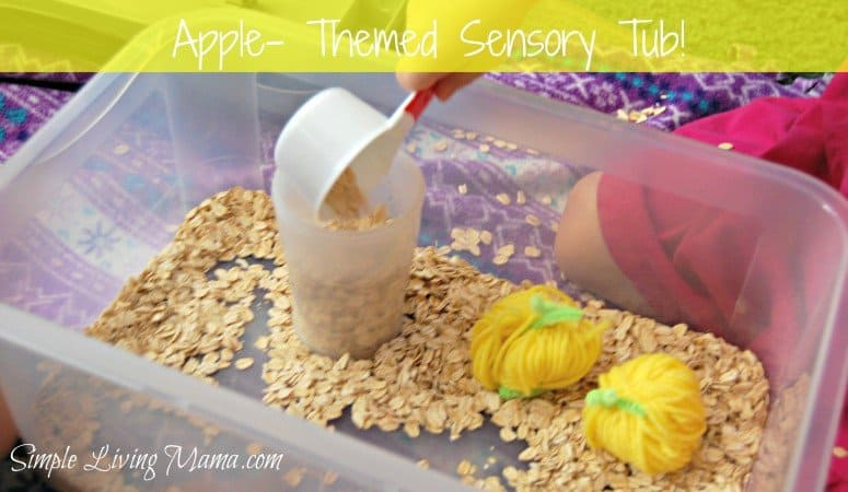 Apple Themed Sensory Tub