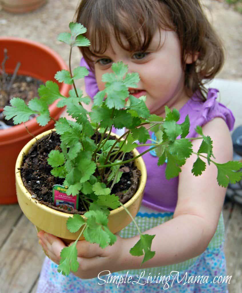 Girl holding cilantro