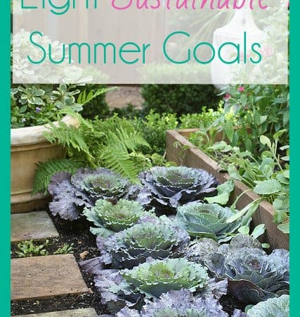 Eight Sustainable Summer Goals