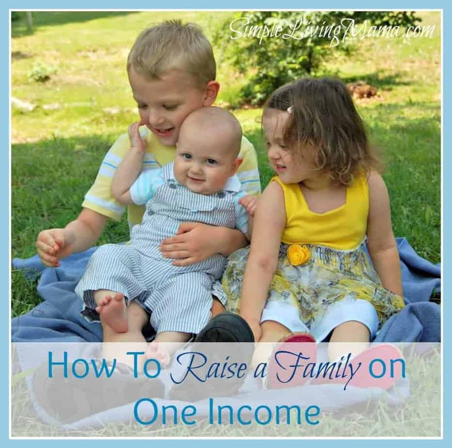 How to raise a family on one icome