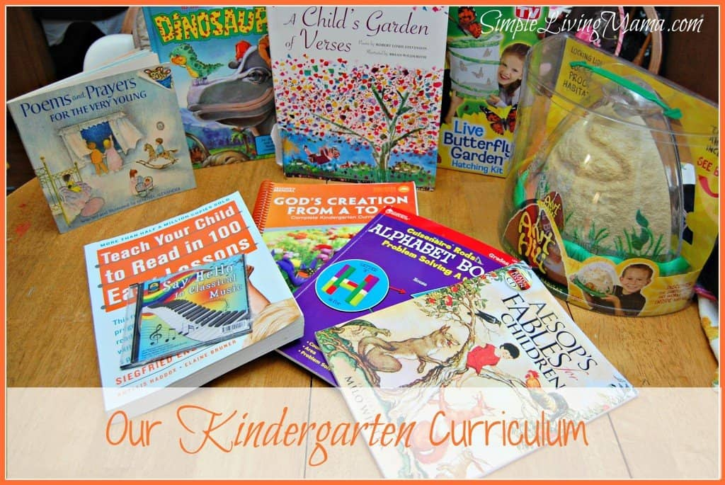 kindergartencurriculum