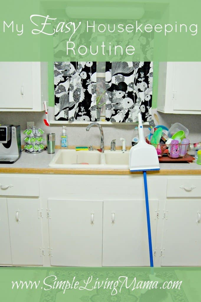 A daily housekeeping routine for a busy mom with young kids.