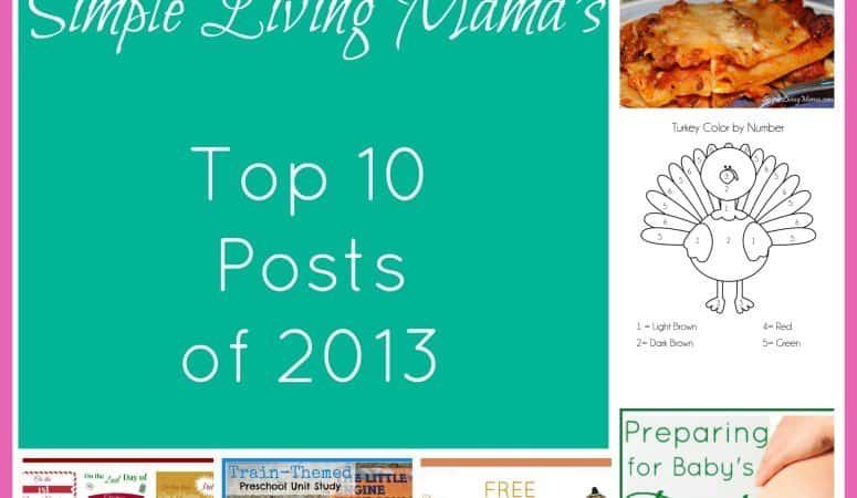 Most Popular Posts in 2013
