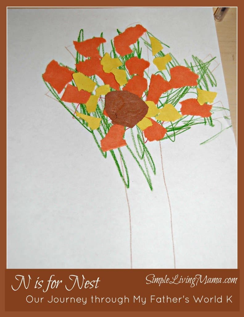 N is for Nest - My Father's World Kindergarten