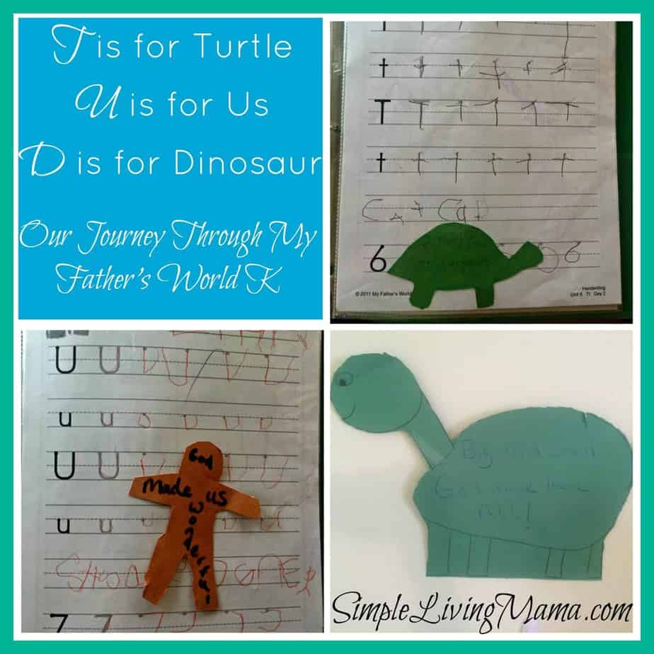 T is for Turtle - My Father's World Kindergarten