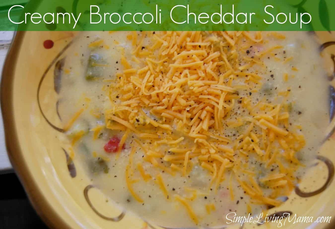 Broccoli Cheddar Soup - Frugal Food Friday - Simple Living Mama