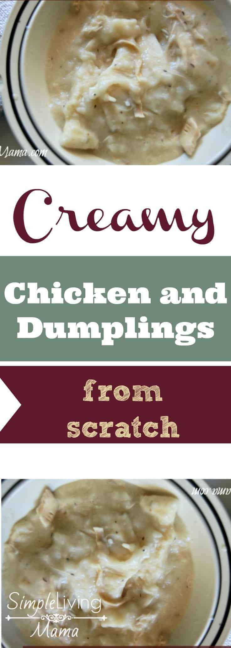 Creamy chicken and dumplings are the ultimate comfort food. Make them from scratch for an even more homey feel. This recipe is just like grandma's!