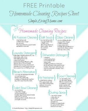 homemade-cleaners-graphic
