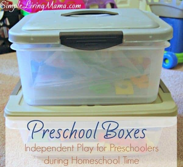 Preschool activity boxes help keep little ones occupied.