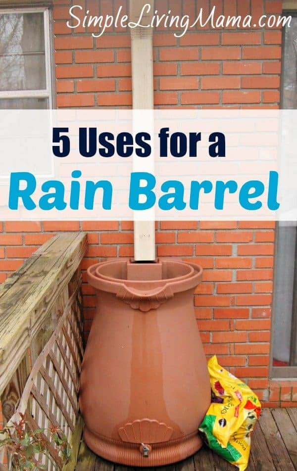 Uses for a rain barrel