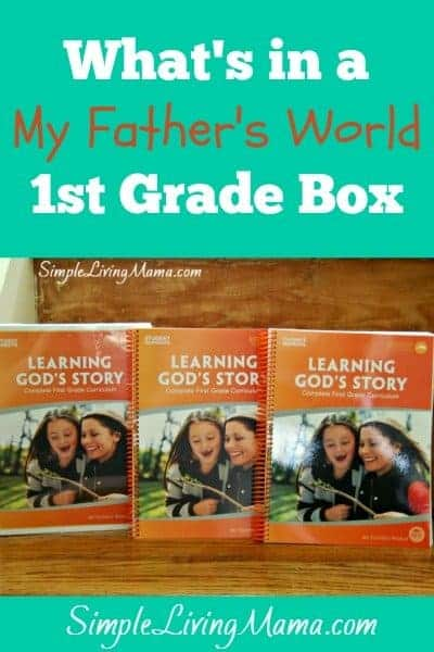 what's-in-a-my-fathers-world-1st-grade-box