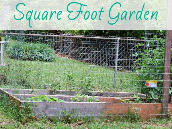 Planning a Square Foot Garden