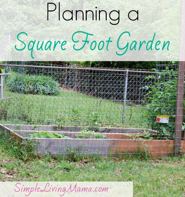 planning-a-square-foot-garden