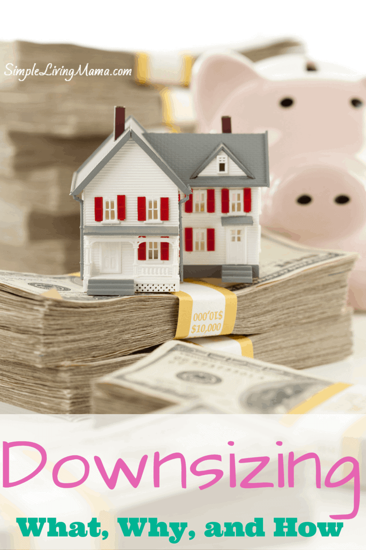 Downsizing - What, Why, and How