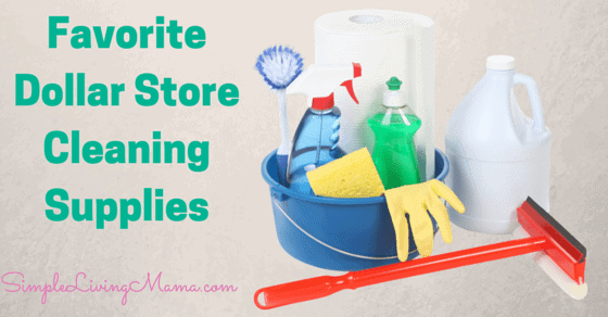 Favorite Dollar Store Cleaning Supplies (1)