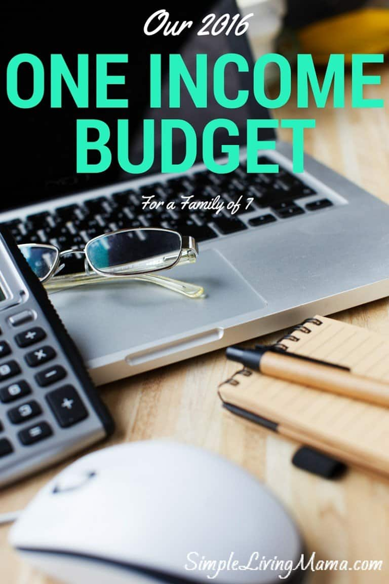 Our 2016 One Income Budget