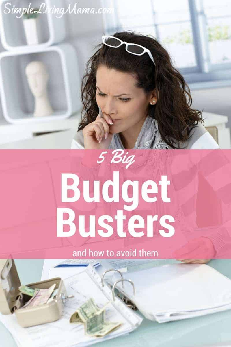 5 Budget Busters