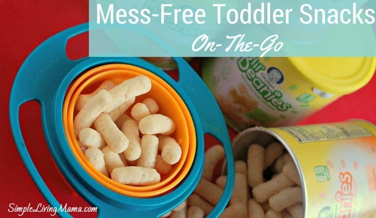 Mess-Free Toddler Snacks for On-The-Go