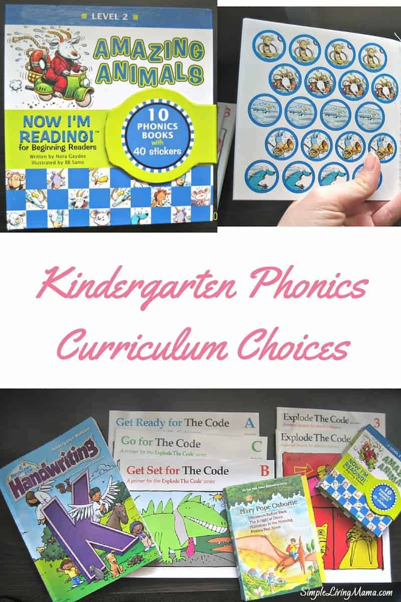 kindergarten mandated curriculum Kindergarten mandated curriculum in regards to the newly state-mandated, textbook-based curriculum for kindergarten, i am apprehensive to the benefits of such said curriculum for children so young.