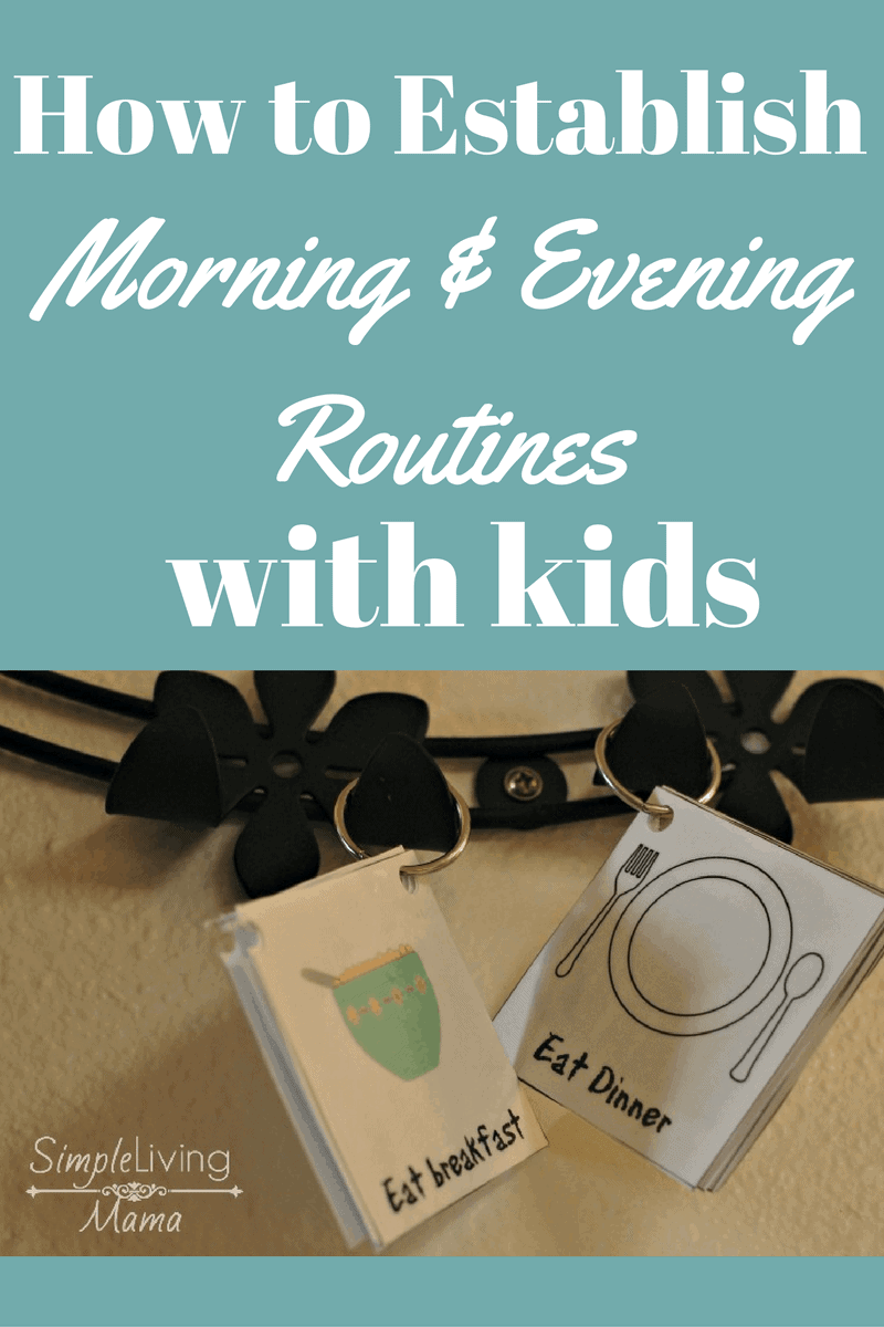How to establish morning and evening routines.