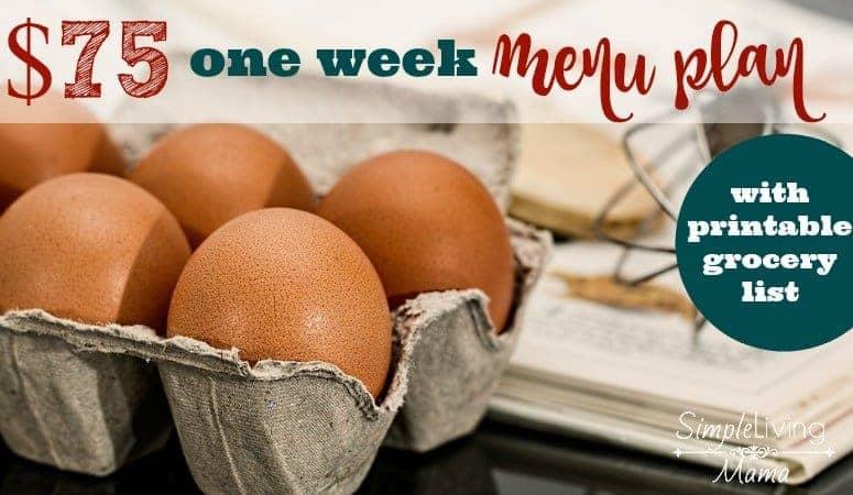 $75 One Week Menu Plan with Printable Grocery List