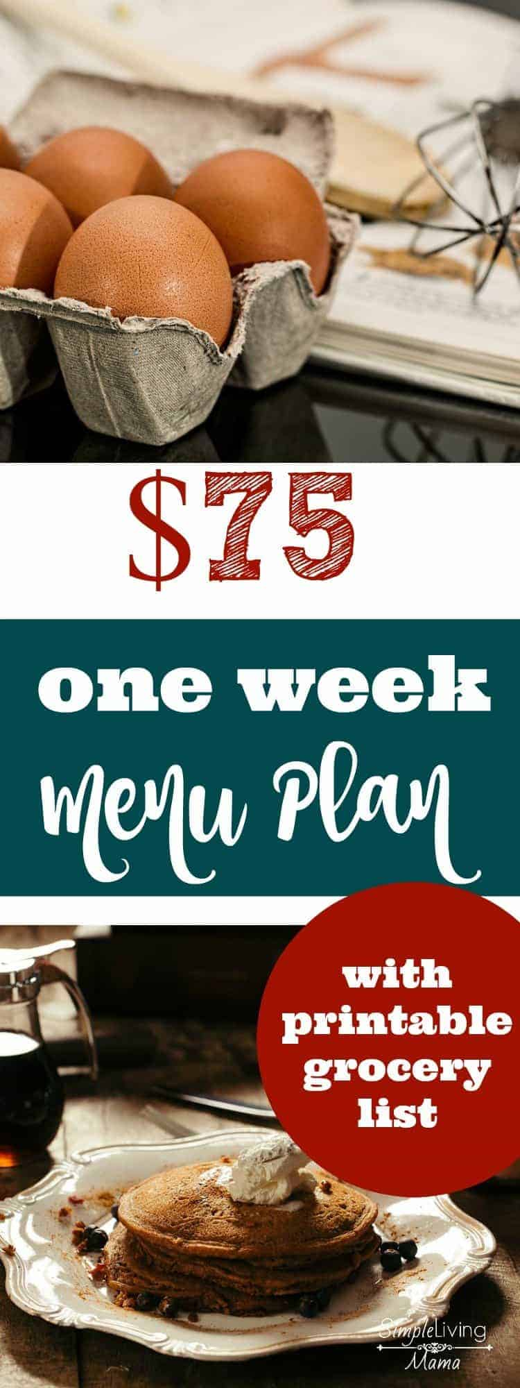 What would you buy if you had only $75 to feed a family of six for one week? This complete one week menu plan breaks down prices for all items and you an even snag a printable version!