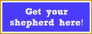 get-your-shepherd-here