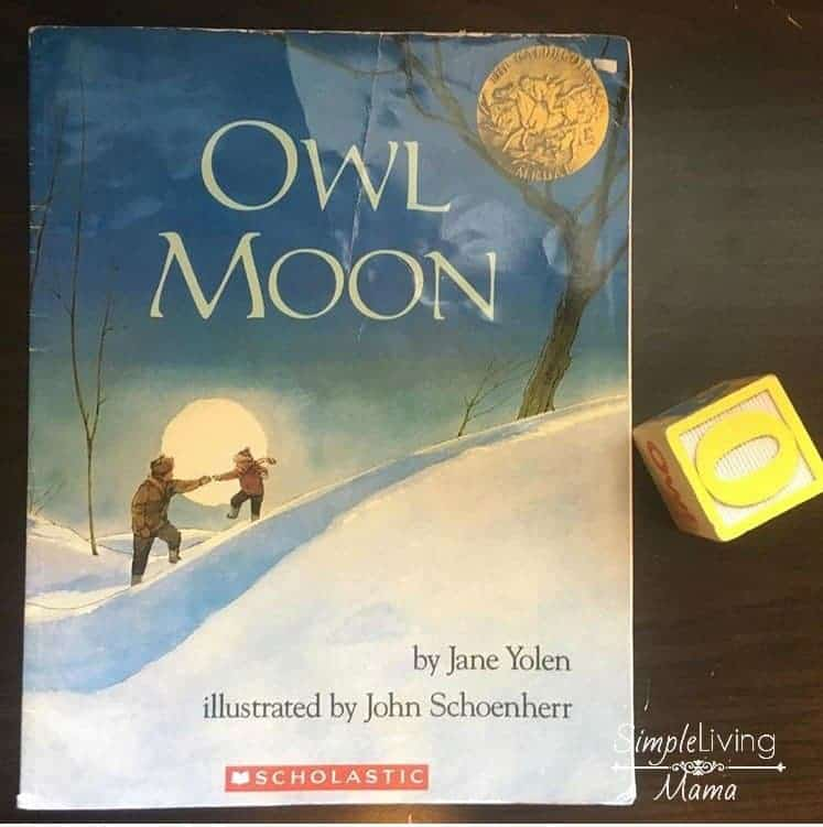 an analysis of the childrens book owl moon Invite your students to crunch through the snow on a quiet moonlit walk in search of a great horned owl this book their children owling owl moon describes.