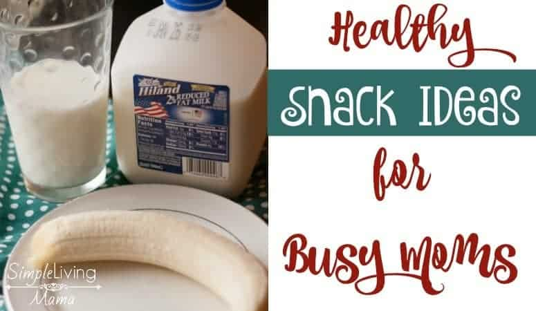 Five Healthy Snack Ideas for Busy Moms