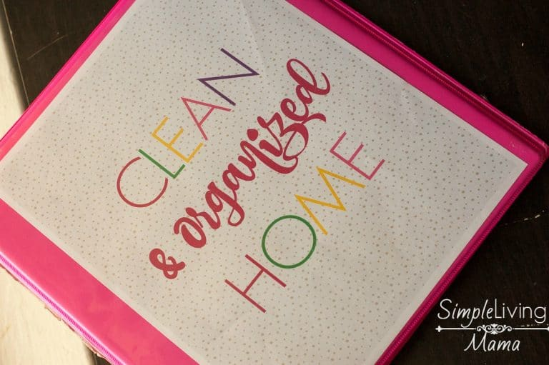 Simplify Your Home with the Clean & Organized Home Planner