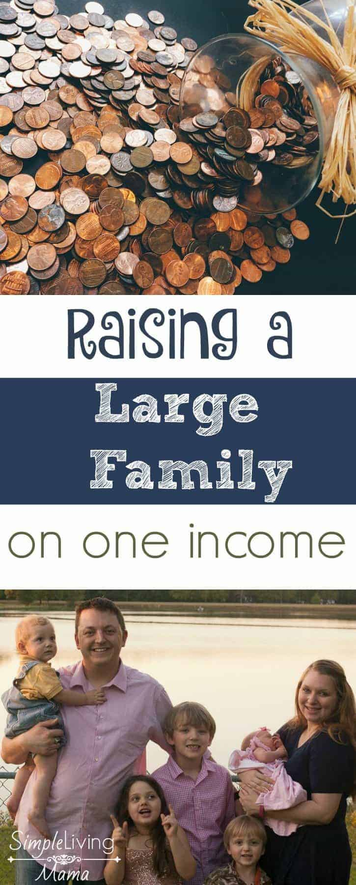 Raising a large family on one income