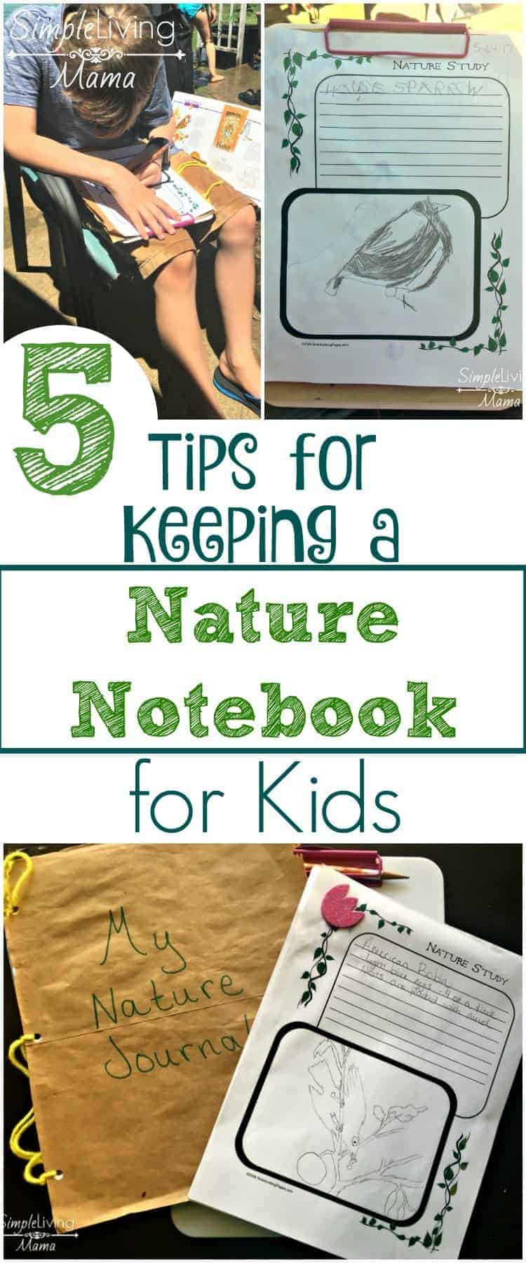 5 Tips for Keeping a Nature Journal for Kids