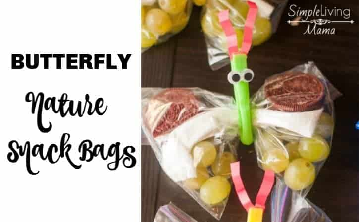 Butterfly Snack Bags for a Nature Walk