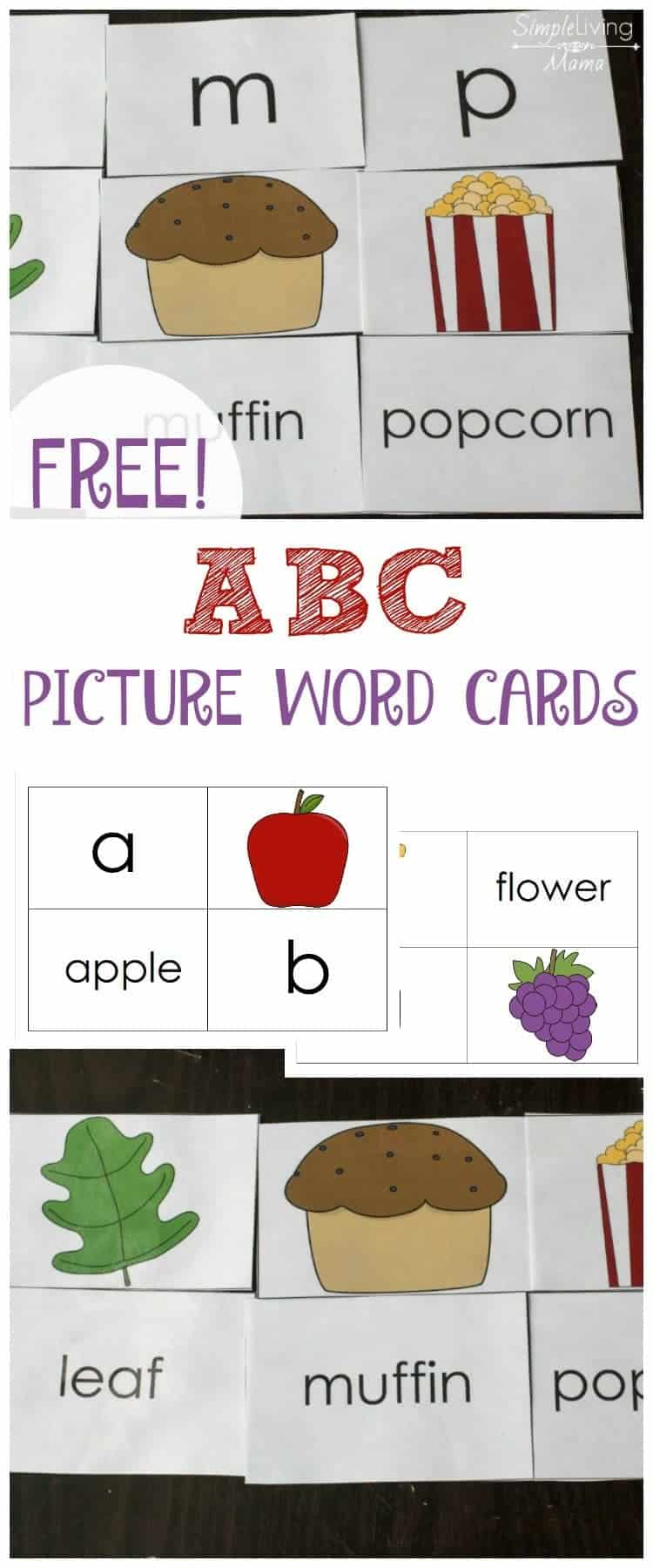 These free printable Alphabet picture word cards are perfect for teaching preschoolers letter and sound recognition. Practice with these ABC flashcards!