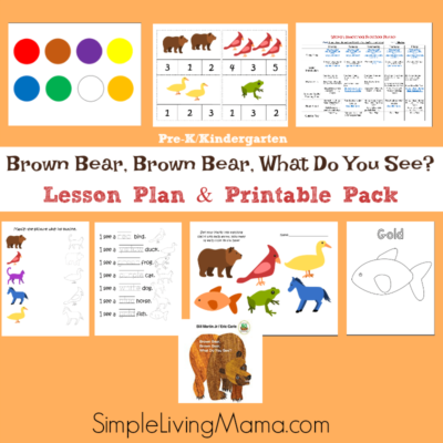 Children's Literature Lesson Plan Packs