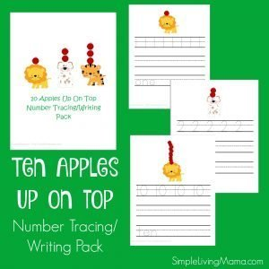 Ten Apples Up On Top number/writing pack