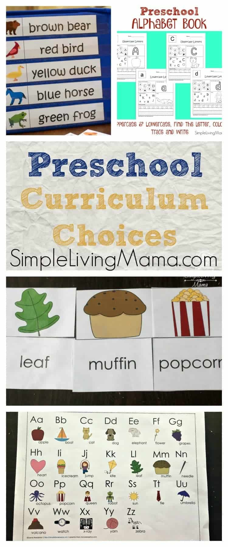 Homeschool Preschool Curriculum Choices