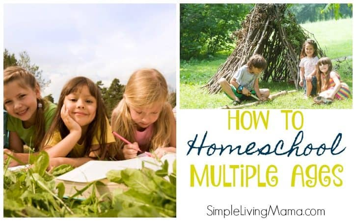 Homeschooling Multiple Ages – How To Homeschool Multiple Grade Levels