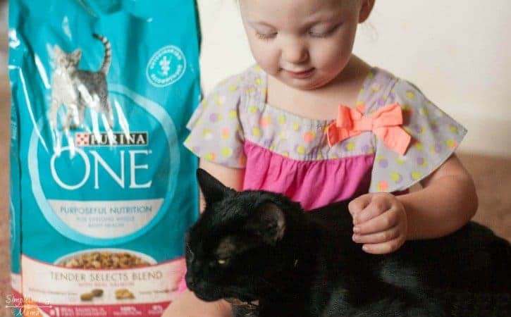 How To Help Your Cat Adjust To Your Toddler