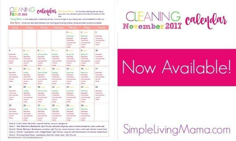 November 2017 Cleaning Calendar