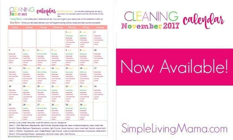 November Cleaning Calendar feature