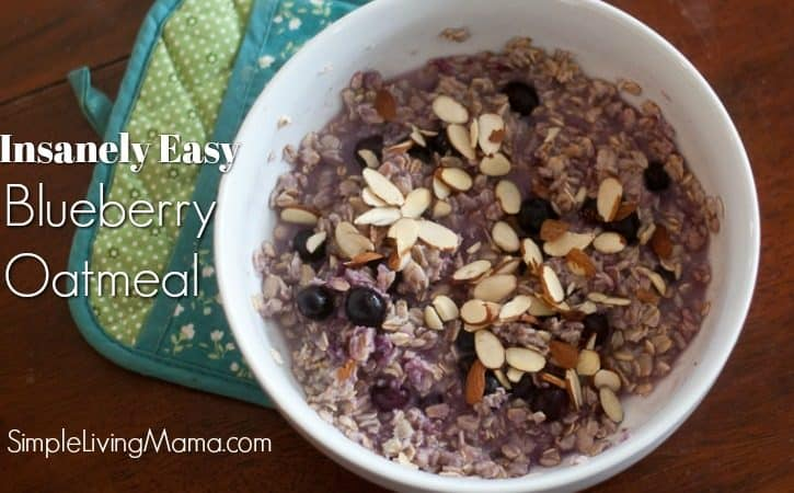 Insanely Easy Blueberry Oatmeal Recipe