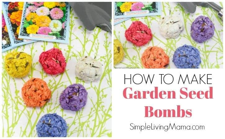 Learn how to easily make these diy garden seed bombs!