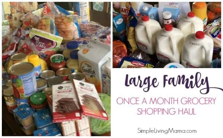 Large Family Once a Month Grocery Shopping Haul – What I Bought for April