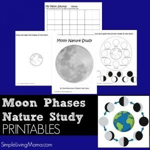 Moon phases nature study printable pack
