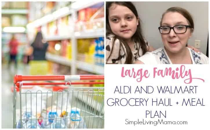 aldi and walmart large family grocery haul