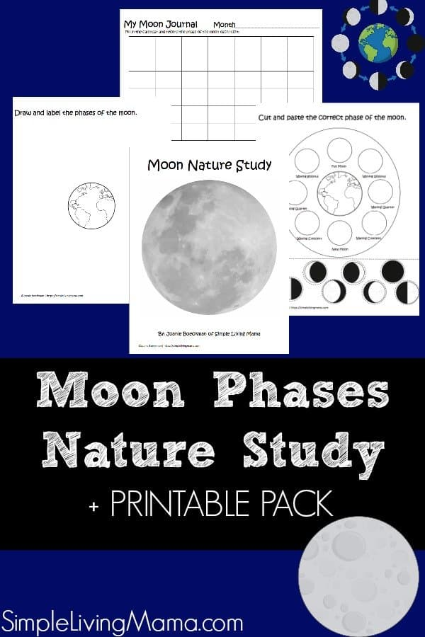 Learn about the moon phases with this nature study guide and moon phases printables.