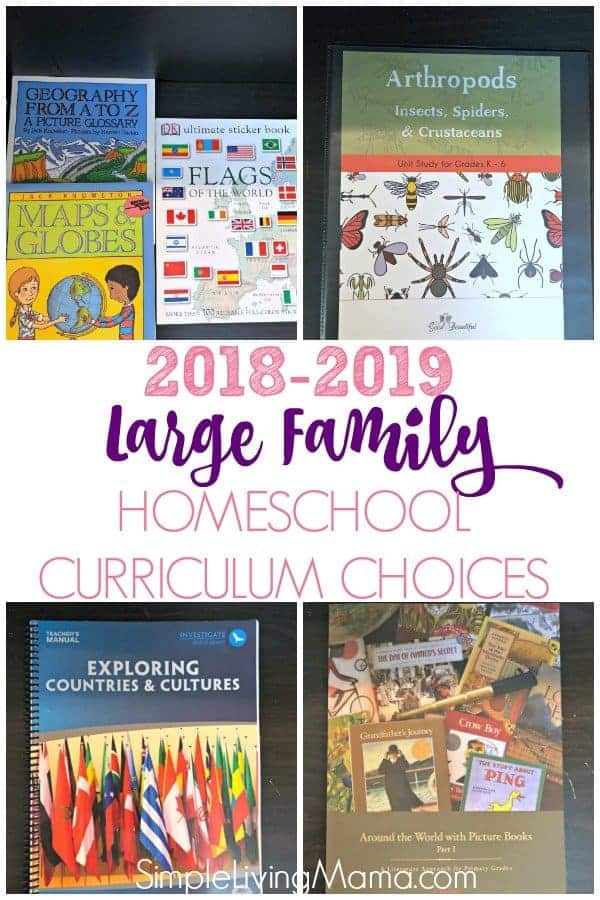 Check out our 2018-2019 large family homeschool curriculum choices. This is my multi-grade curriculum and what I use to teach multiple ages!