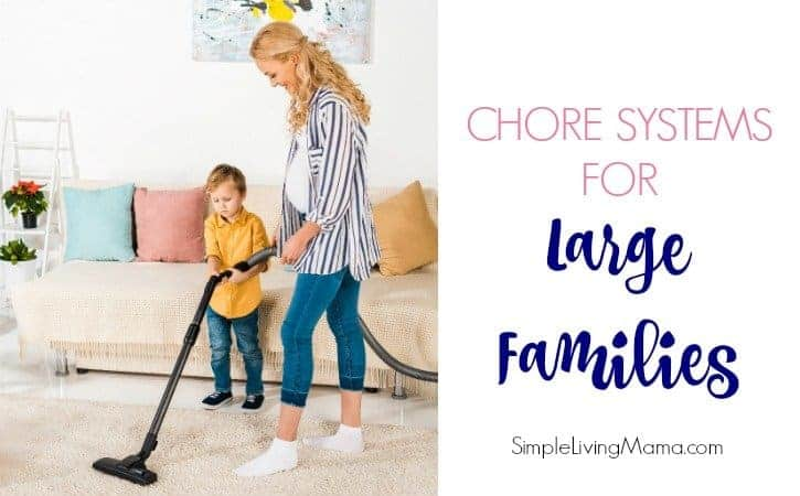 Large family chores